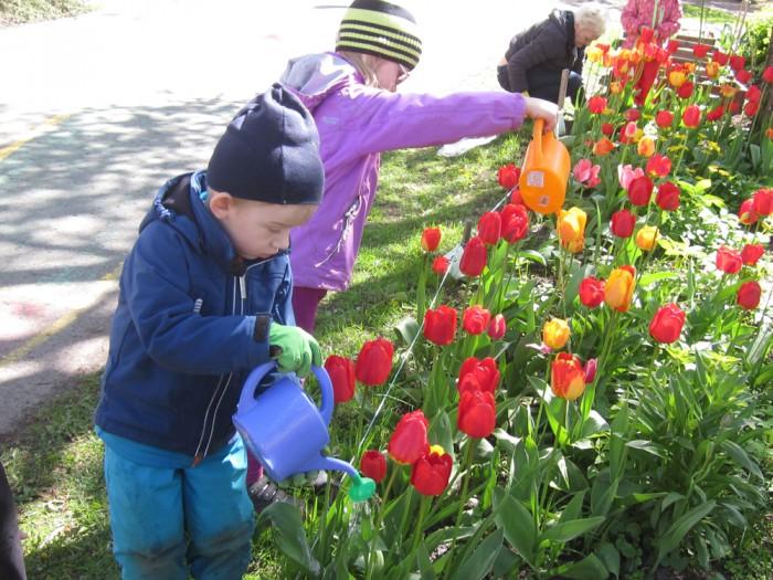 Foto: Tallinna Lille lasteaed