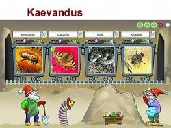 Näide ühest auhinna saanud veebimängust aadressil  www.frepy.eu