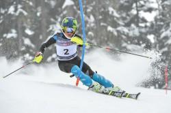Tormise viimane suurem saavutus on esikoht paralleelslaalomis eelmisel aastal Kanada FIS-Childreni Whistler Cupi võistlusel.