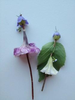 Lilleõitest ja -lehtedest Pöial-Liisisid oskab teha ilmselt iga laps.