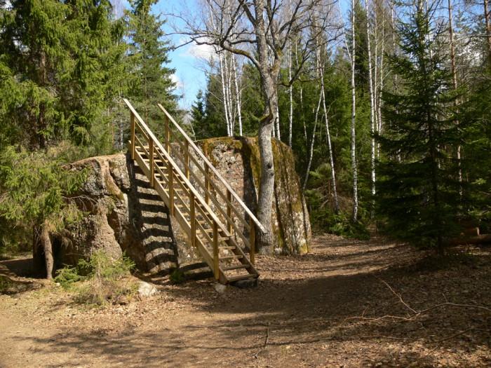 """Pahkla Suurkivi, Eestimaa kivide kuningas, 4,3 m kõrge. Sõjaväega suheldes kohalikul valitsusel """"suurt otsustusõigust ei olnud, kuid ometi oli Tõnurist see mees, kes Pahkla raketibaasi piiride määramisel hakkas tõrkuma ja ütles: """"Siin paikneb Eestimaa kivide kuningas ja see peab külastajatele kättesaadavaks jääma!"""" Sõjamehed tegidki okastraataiale jõnksu sisse ja nii said turistid kivilt raketibaasi kiikamas käia. Enamik tollastest juhtidest nii julgelt ei käitunud."""" (Anto Raukas, 2011). Foto: Vikipeedia / Kadri Niinsalu"""