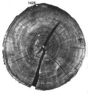 Kaali järve ülemistest setetest tamme eluring (vt Vello Lõugas. Kaali kraatriväljal Phaethonit otsimas; 1996). Üks viimaseid järve langenud põlispuid on varisenud aastal 1426. Seega pidi olema seks ajaks püha hiie hävitamisega ühele poole jõutud.