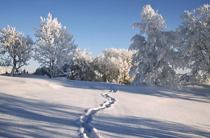 Eestimaa igal maastikupiirkonnal on pakkuda midagi erilist. Meil on võimalik nautida Vahe-Eesti veeuputust, Lääne-Eesti linnuuputust, Lõuna-Eesti lumeuputust ...