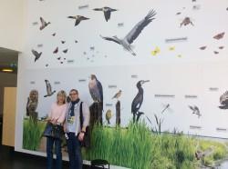 Kadrioru saksa gümnaasiumi õppejuht Sirje Kaljula ja E4F programmi koordinaator Klemen Slabina Kopenhaageni Ørestadi koolis, kus seinadki õpetavad.