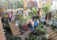 Uue loodusmaja talveaias saab õpilastele selgemaks eksootiliste toidutaimede maailm.  Foto: Tartu keskkonnahariduse keskus